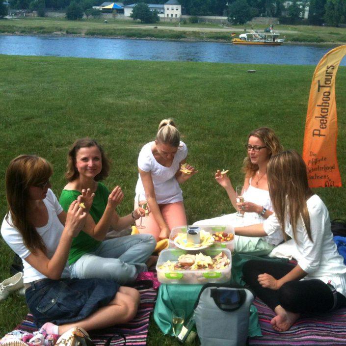 Picknick an der Elber